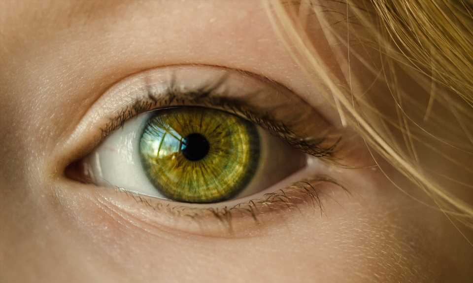 New approach to slowing nearsightedness in children shows promise