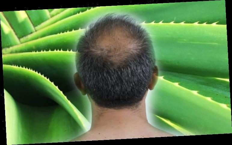Hair loss treatment: A plant used for centuries could help halt your hair loss