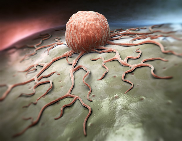 New method measures temperature inside the body for detecting cancer, other diseases